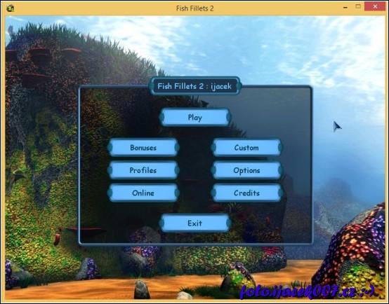 obrázek Hlavní menu hry anglicky