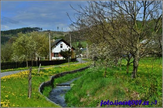 obrázek jaro