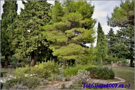obrázek pohled na zahradu