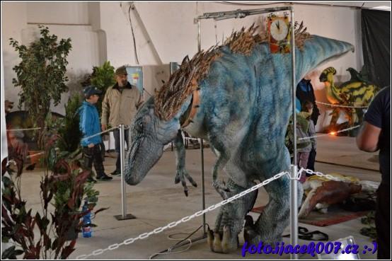 obrázek Oblek dinosaura