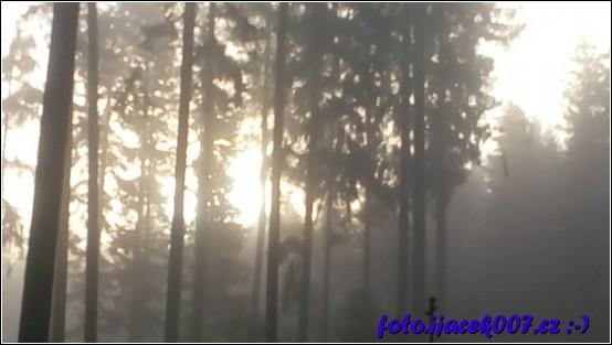 obrázek puzzle forest